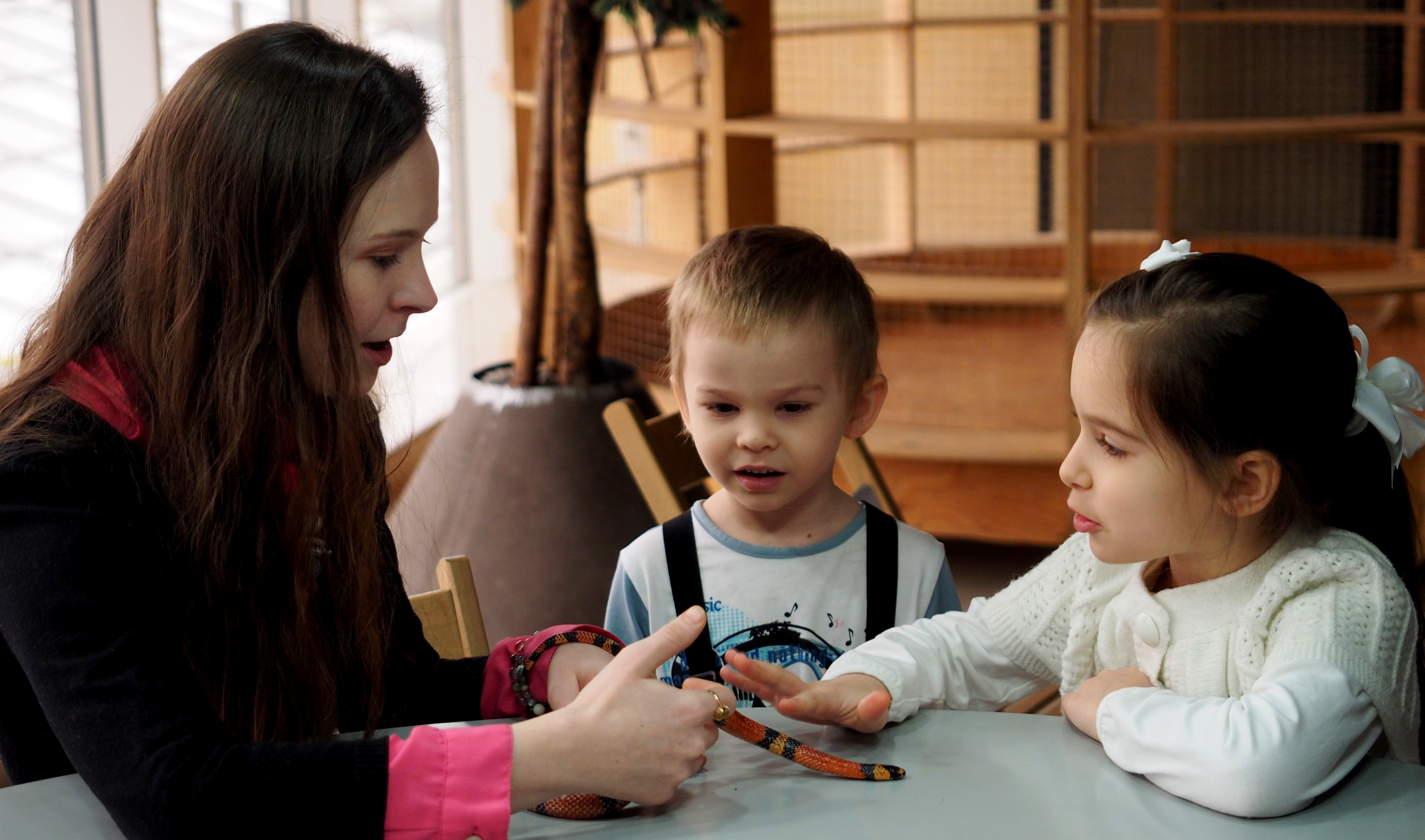 анималотерапия детям